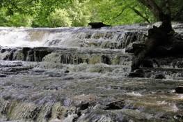 2019 05 13 22 Burgess Falls TN