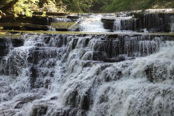 2019 05 14 5 Rutledge Falls TN