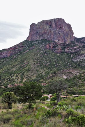 2019 05 26 119 Big Bend National Park Texas