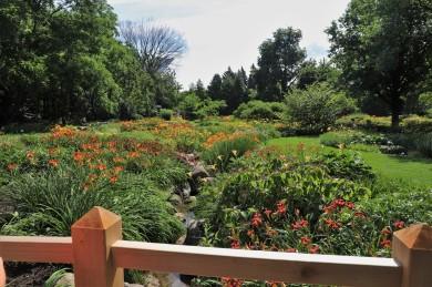 2019 07 31 88 Montreal Botanical Gardens